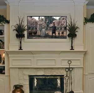 Flat Panel TV Installation