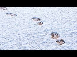 footprintsinsnow